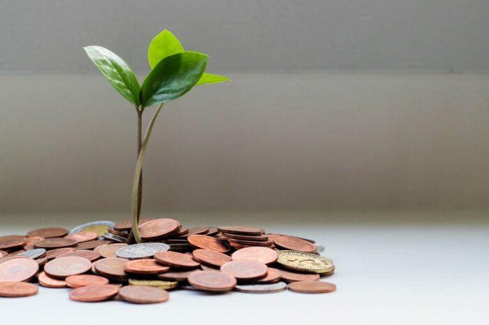 Úspora peněz  z výplaty může mít spoustu podob